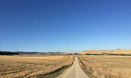 Caminhar – Quando peregrinar é seu novo desafio