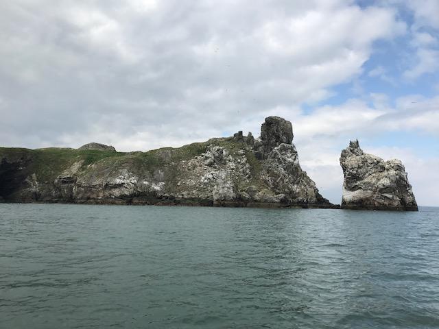 Um passeio na ilha Ireland's Eye
